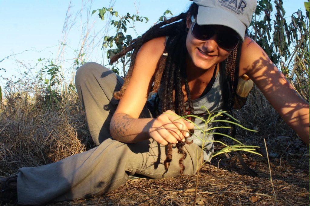 Horta Urbana: o primeiro passo para uma vida sustentável 1