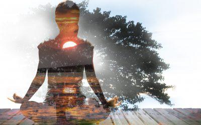 Mindfulness: como sair do piloto automático