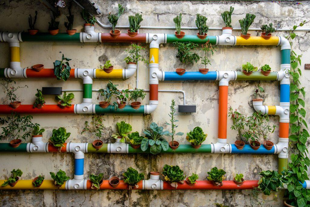 Horta Urbana: o primeiro passo para uma vida sustentável 2