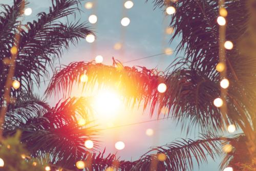 Novidades: Cosy oferece opções para as comemorações de final de ano